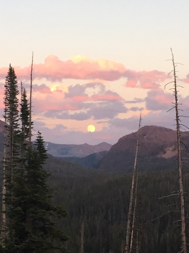 Yellowstone full moon