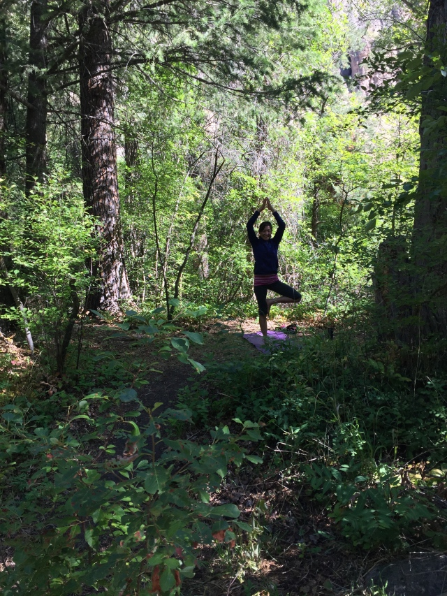 Elizabeth doing her morning yoga routine at camp.  A tree amongst trees.